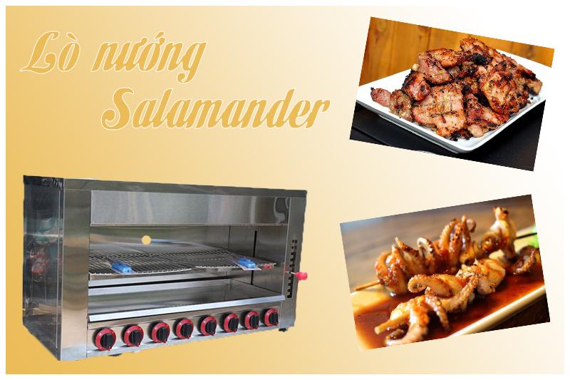 Lò nướng salamander