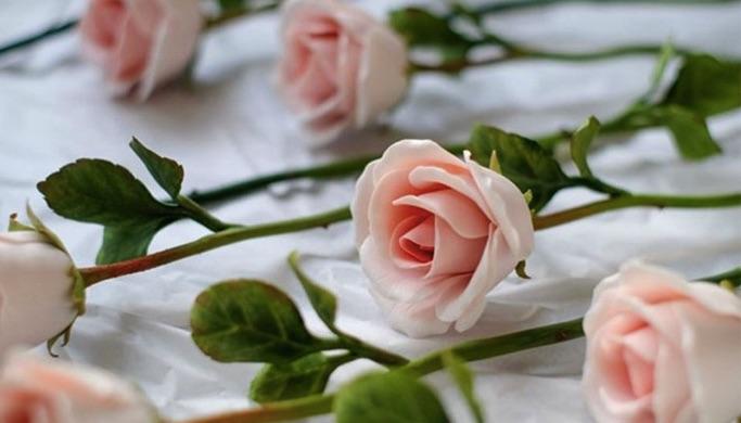 Nhiệt độ sấy khô của các loại hoa
